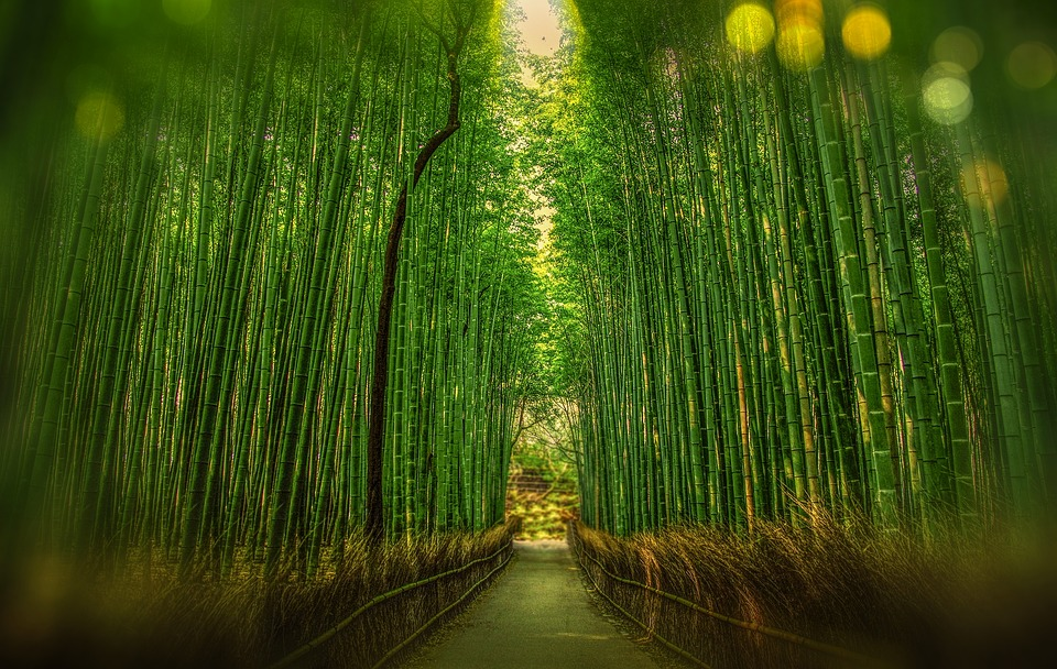Ponúkame už 9 typov poťahov. Od klasiky po bambus, aloe vera alebo aktívne striebro